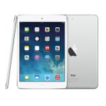 unlock Apple iPad Mini