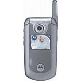 unlock Motorola E815