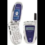 unlock Motorola i95cl