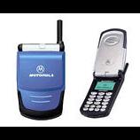 unlock Motorola Talkabout 8167
