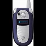 unlock Motorola V303P
